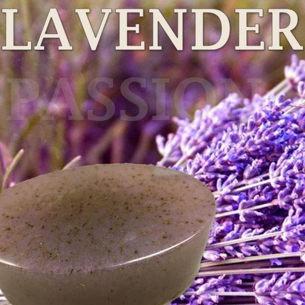 lavender1a